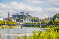 Salzburg summer time: Panoramic city landscape with Salzach with green grass and historic district