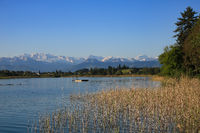 Clear spring morning at the shore of Lake Pfaffikon, Switzerland.