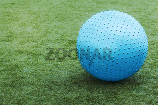 Blue ball on green grass.