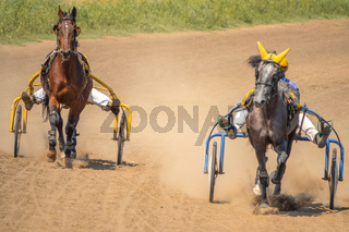 Two Horses Compete in Harness Racing on a Summer Day