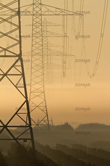 Power poles with fog