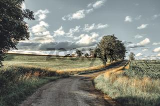 Summer landscape Vysocina Czech Republic