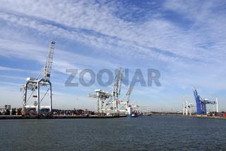 Container-Verladebrücke im Hafen von Rotterdam