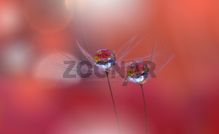 Beautiful Nature Background with Dandelion Flowers.
