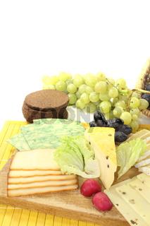 Käsescheiben mit Radieschen