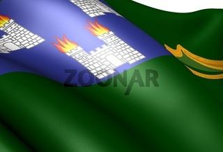 Flag of Dublin. Close up.