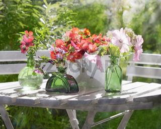 blüten garten freizeit