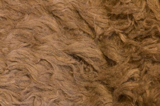 Raw cheep wool