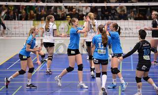 Volleyball Bundesliga, VC Wiesbaden - VTA Hamburg