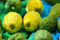 Excellent citruses - etrogs
