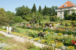 Botanischer Garten Muenchen, Schmuckhof, Munich Botanic Garden