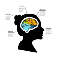 Woman brain potential, bright detailed infographic with text place on white