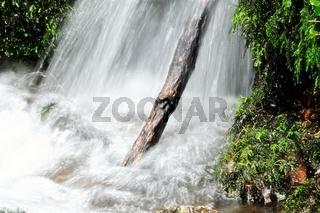 Wasserfall und Baumstamm