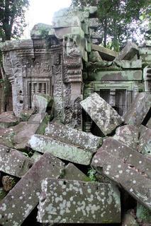 Ta Prom in Angkor