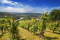 The Neckar Valley, View from the Michelsberg, Gundelsheim, Baden-Württemberg in Germany, Europe