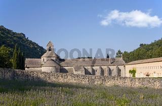 Abbey Senanque