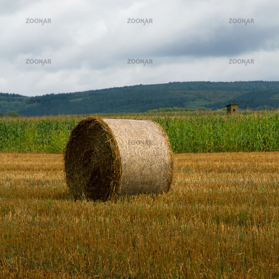 Field with bale of straw. Germany