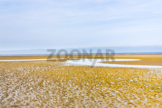 low tide on sand beach in Normandy