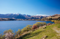 Lake Hayes in New Zealand
