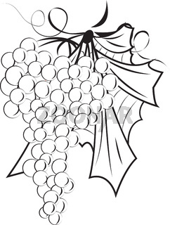 A Bunch of grapes outline
