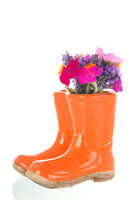 Flower bouquet in child boots