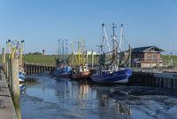 Shrimp boats in the old fishing port of Dorum