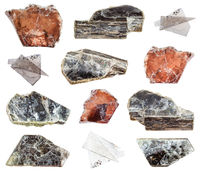 collection of various Muscovite minerals isolated