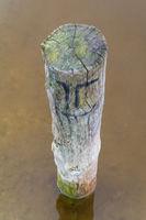 Pole on a lakeside