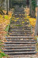 Stone steps - Szentendre