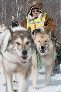Kamchatka extreme Dog Sled Racing Beringia. Russia, Far East. Kamchatka Peninsula