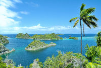 Fam Island Top view Star Lagoon Raja Ampat Indonesia