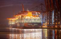 Container Terminal Eurogate Burchardkai in Hamburg, loading and unloading by the shipping