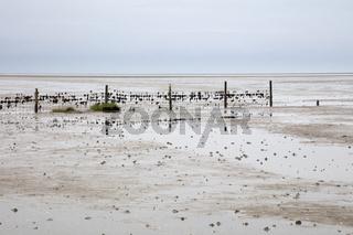 Zaun im Wattenmeer