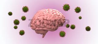 Coronavirus attacks the brain
