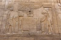 The Egyptian falcon god Horus and Sobek detail on the wall in the Temple of Kom Ombo