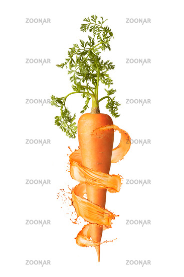 Vertical fresh ripe carrot root with splashes.