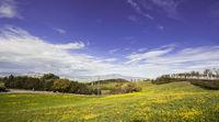 Italian landscape with Trevinano
