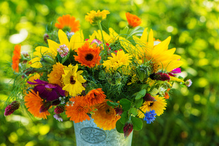 Colorful wild flower bouquet in a garden