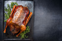 Traditional roasted stuffed Christmas goose with herbs as top view on a rustic metal tray with copy space right