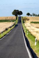 lonely country road in summer through fields to a hill with trees