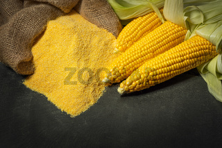 Ripe young sweet corn cob and cornmeal