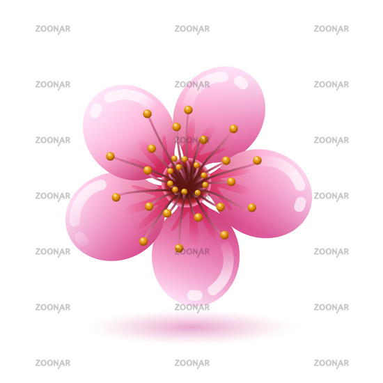 Beautiful pink sakura flower icon on white background, Japan cherry blossom, vector illustration.