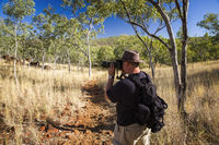 Nature photographer on a hiking trip at the Australian outback between Eucalyptus tree