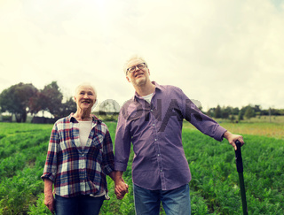 happy senior couple at summer farm