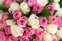 Close-up of a bunch of white and pink roses