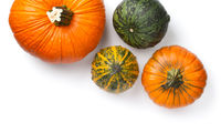 Fresh Autumn Pumpkins Isolated On White Background