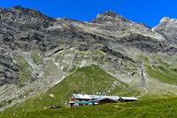 Alp Anzeindaz at the foot of the Diablerets massiv, Anzeinde, Bex, Vaud, Switzerland