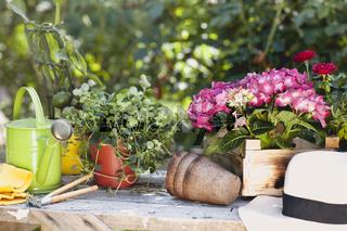 Vintage garden furniture on terrace