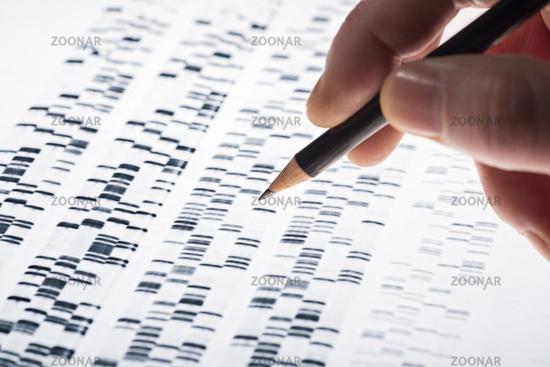 Using DNA gel