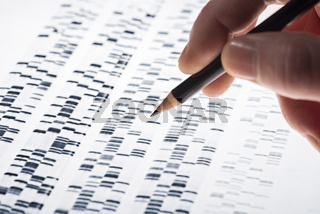 Auswertung von DNA-Gel